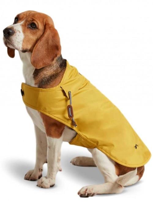 Hunde-regnfrakke Coast, fra Joules