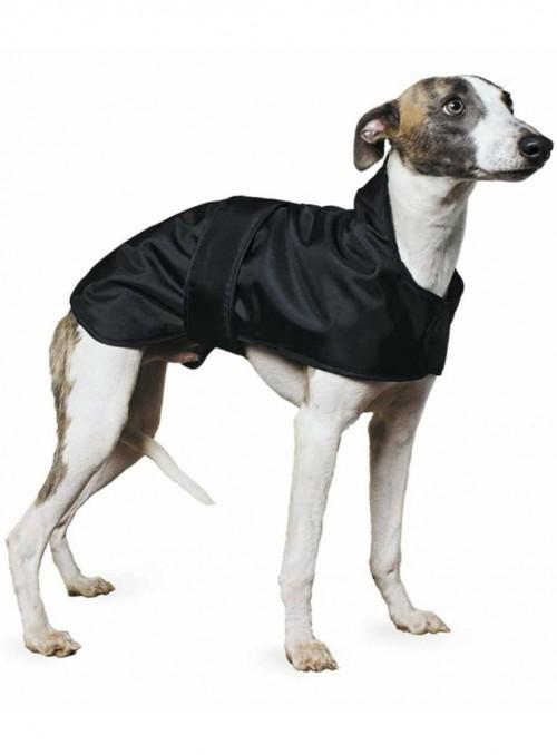 Whippet frakke, myndefrakke