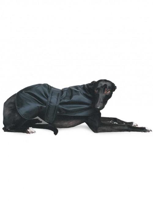 Greyhound frakke, myndefrakke