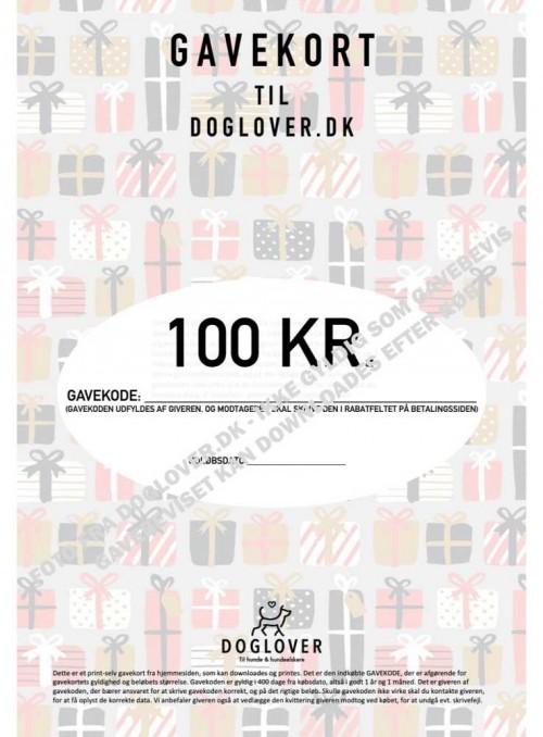 Gavekort 100 kr. med pakke-motiv