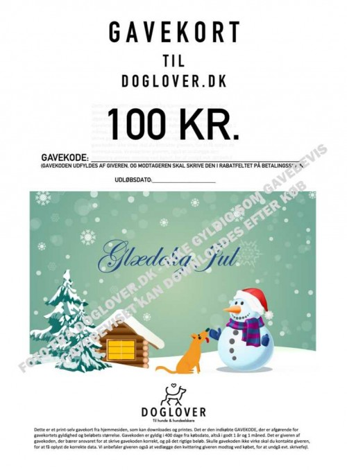 Gavekort 100 kr. med jule-motiv