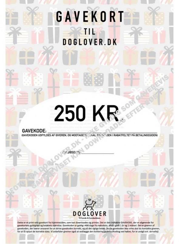 Gavekort 250 kr. med pakke-motiv