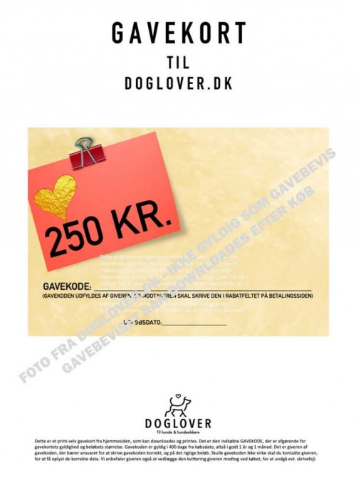 Gavekort 250 kr. med hjerte-motiv