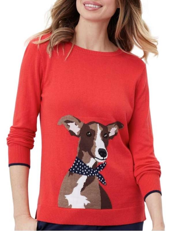 Strik sweater bomuld/bambus Miranda med hund fra Joules